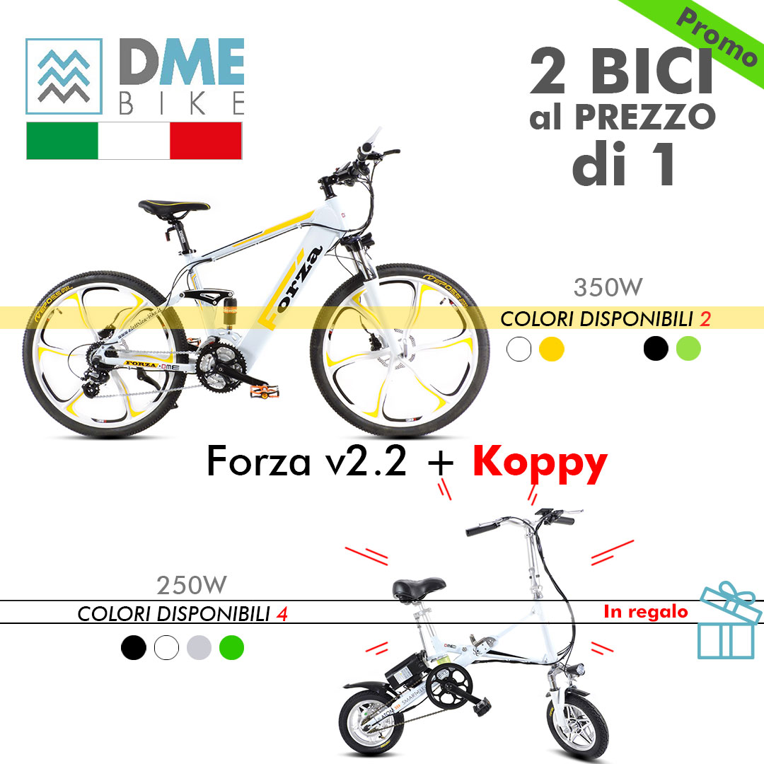 2PZ BICI BICICLETTA ELETTRICA Mountain Bike Forza 350W + Folding Bike Koppy