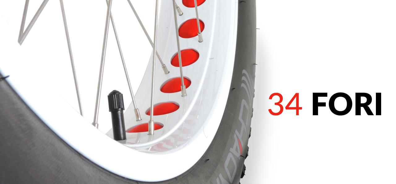 bici elettrica pneumatico grande