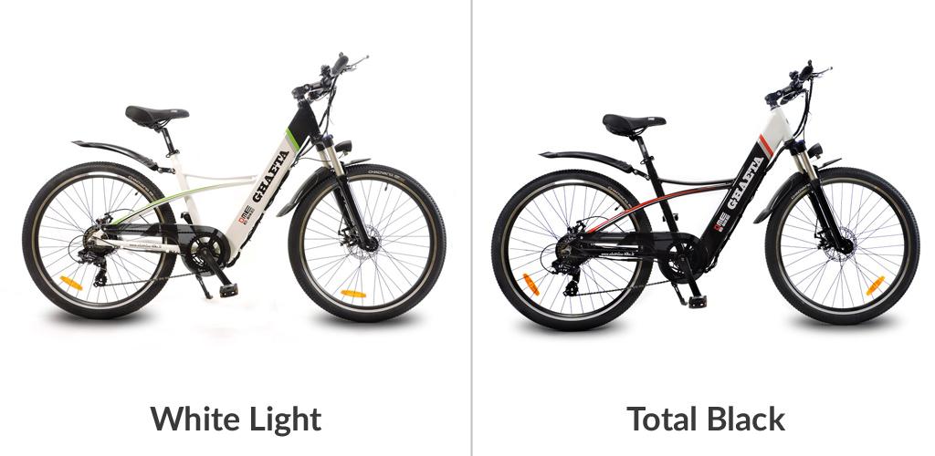 bicicletta a pedalata assistita