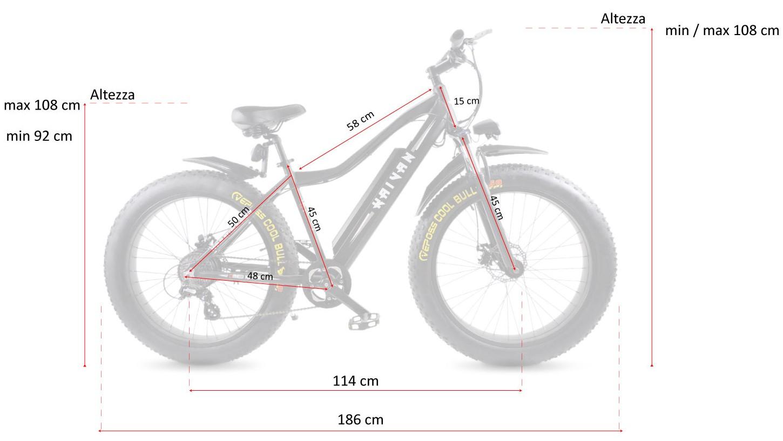 bicicletta ruote grosse a pedalata assistita